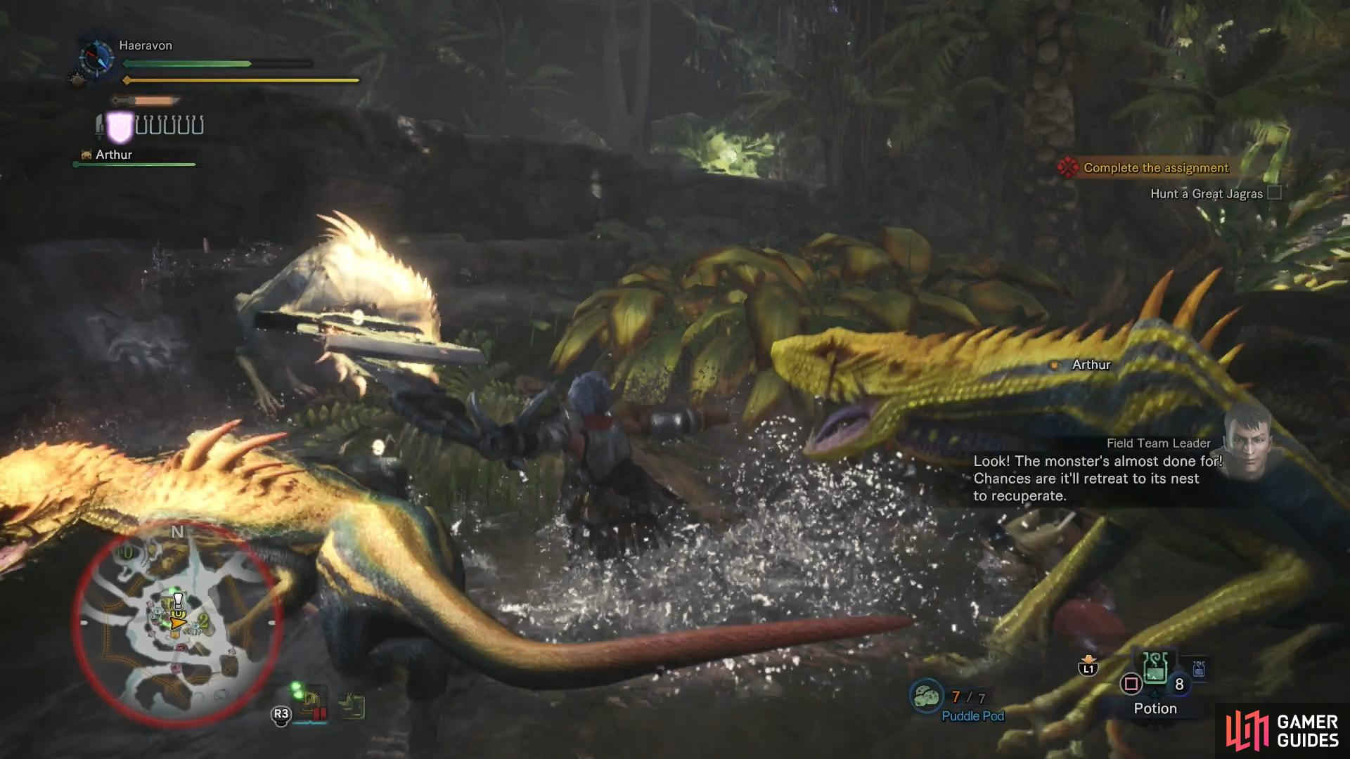If the Great Jagras retreats to its lair, you'll have to deal with numerous lesser Jagras as well