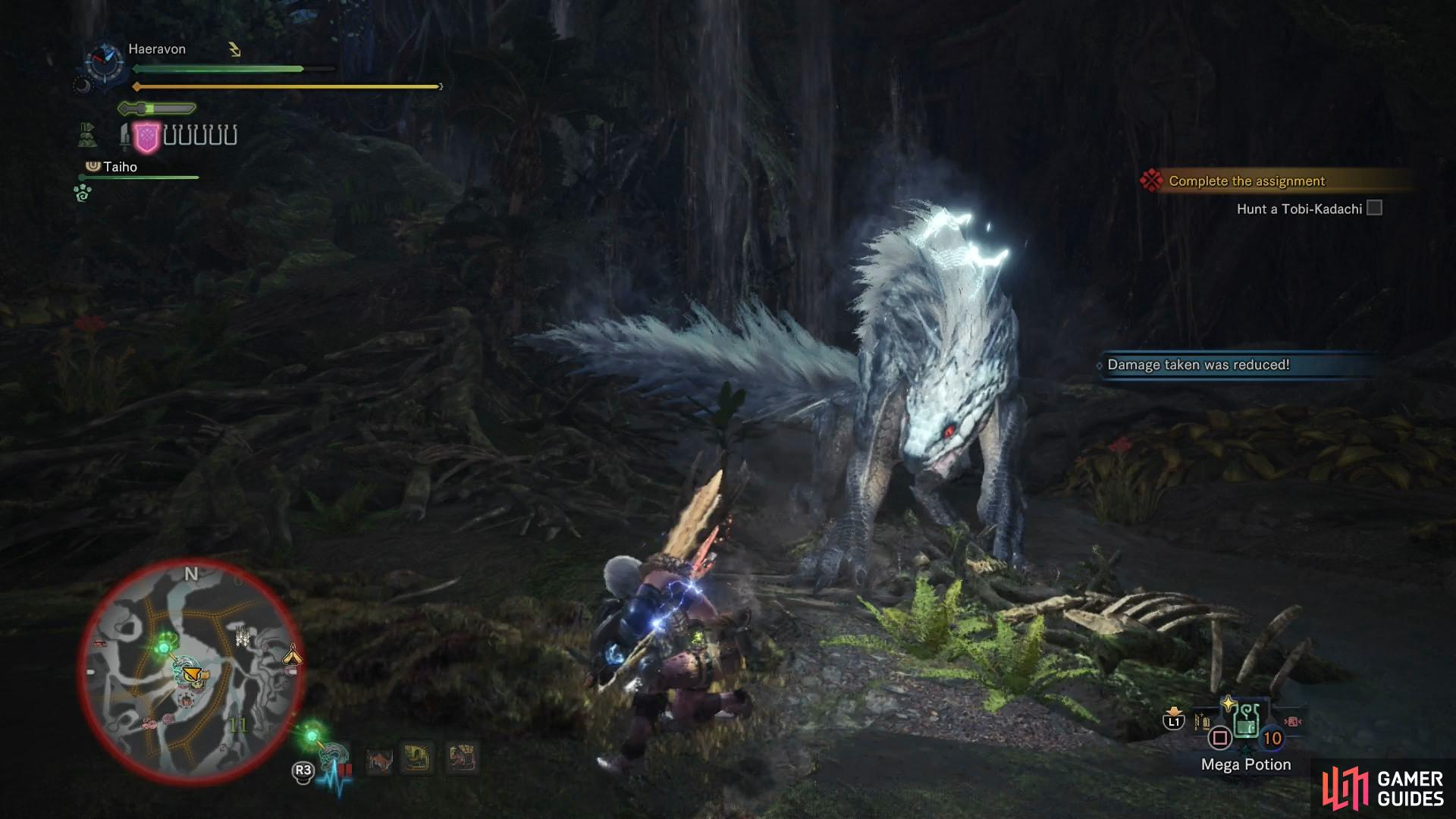When enraged, the Tobi-Kadachi will charge itself up