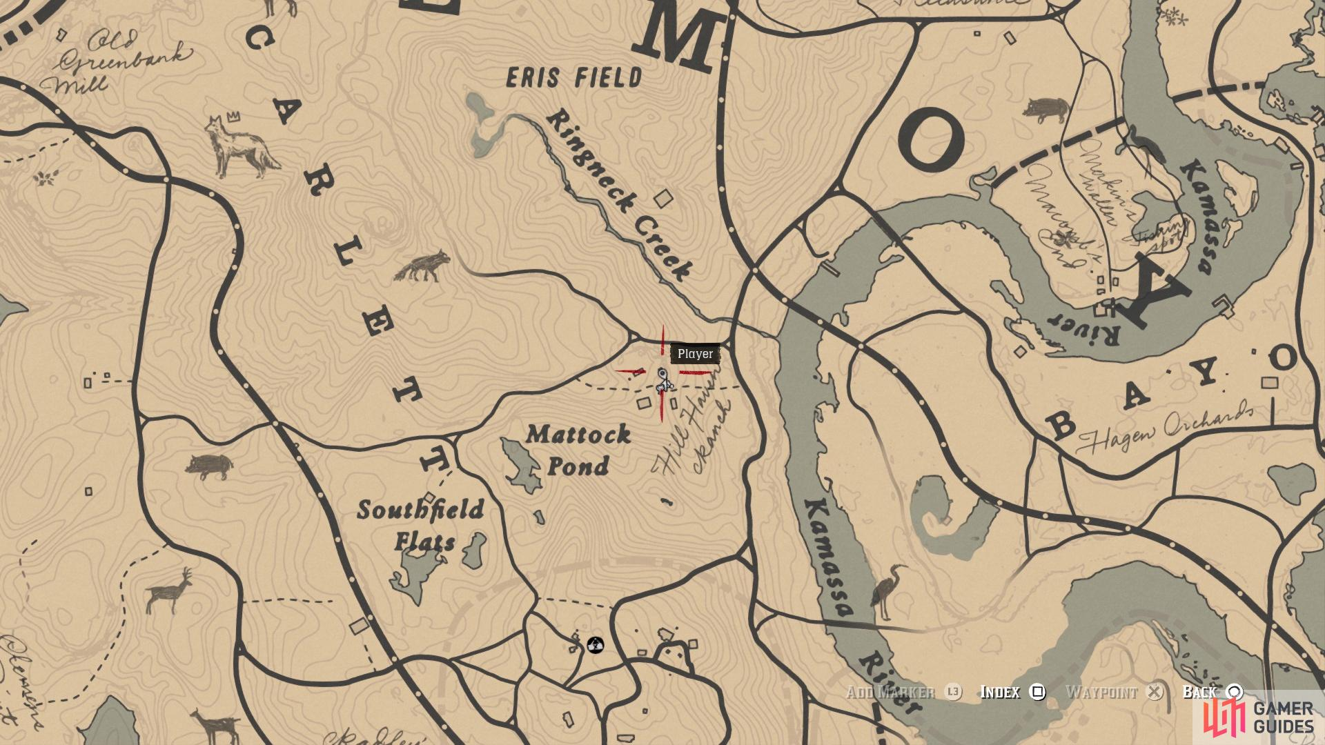 The location of the Cornelius Palmer card on the map
