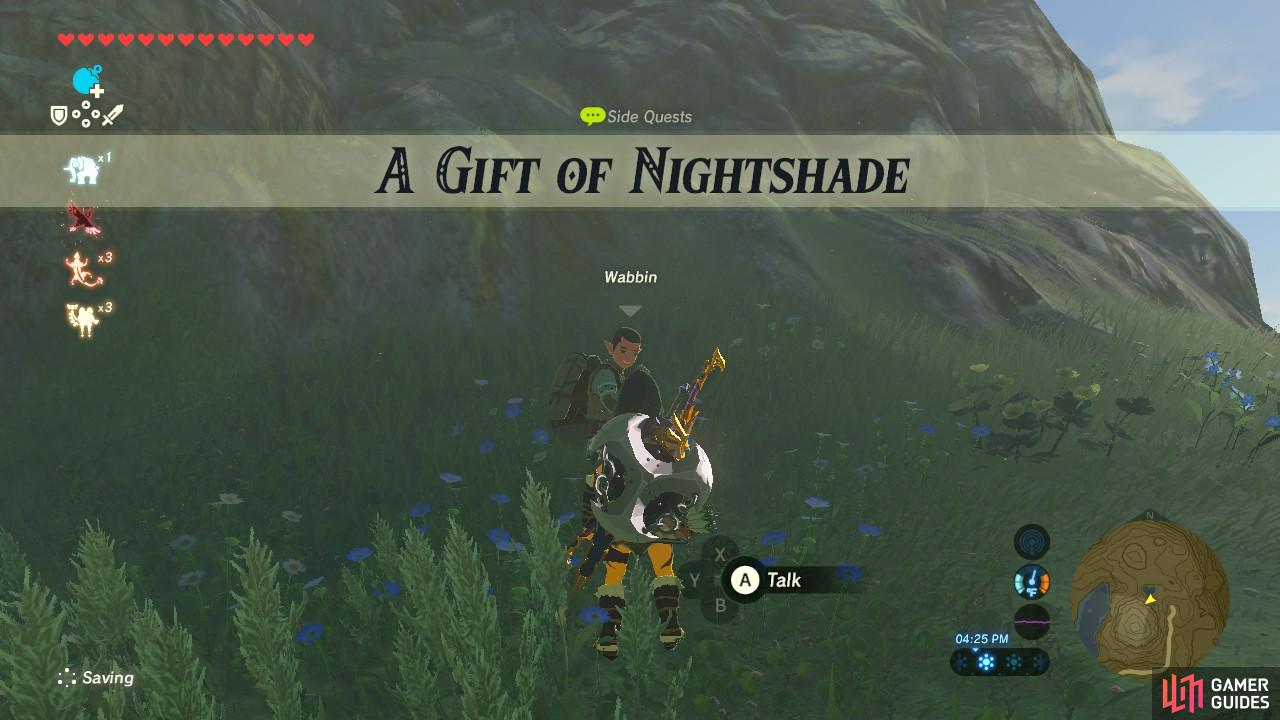 A Gift Of Nightshade Sidequests The Legend Of Zelda Breath Of