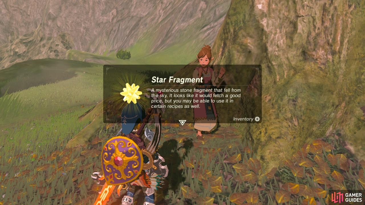 You will receive a rare, precious Star Fragment