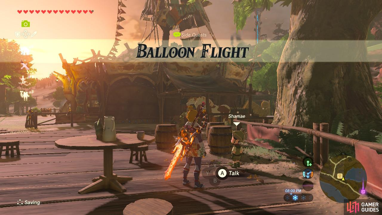 This sidequest involves some Octo Balloons