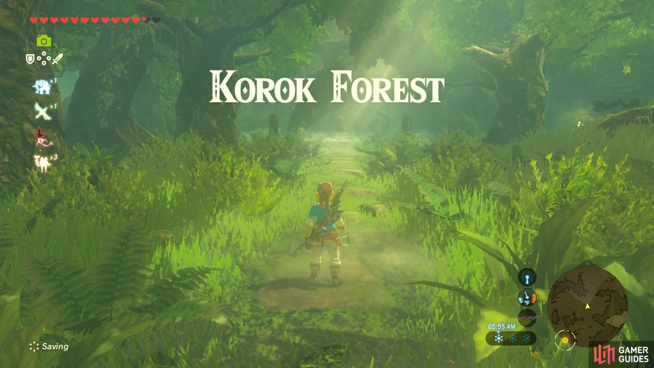 Korok Forest is a safe and wholesome place so you can relax here and enjoy the greenery
