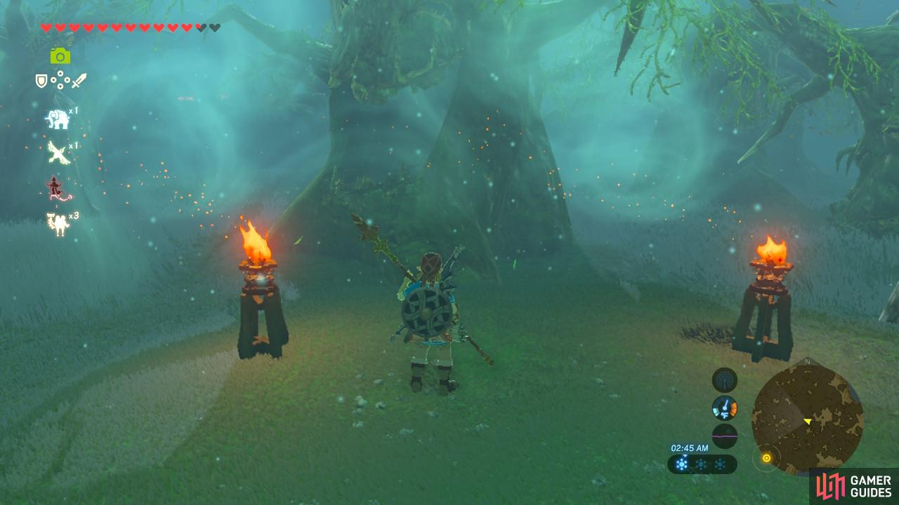 This tree and the two torches marks the halfway point in the Lost Woods