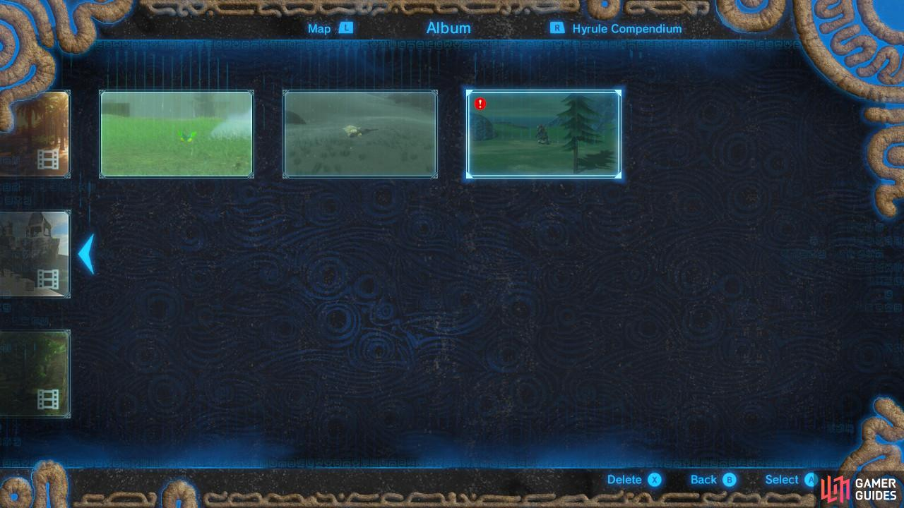 The photo has to be in your album, not just your Hyrule Compedium