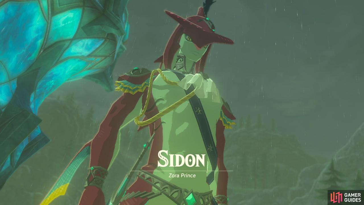 He will help get you to the Zora's Domain and, ultimately, the Divine Beast.