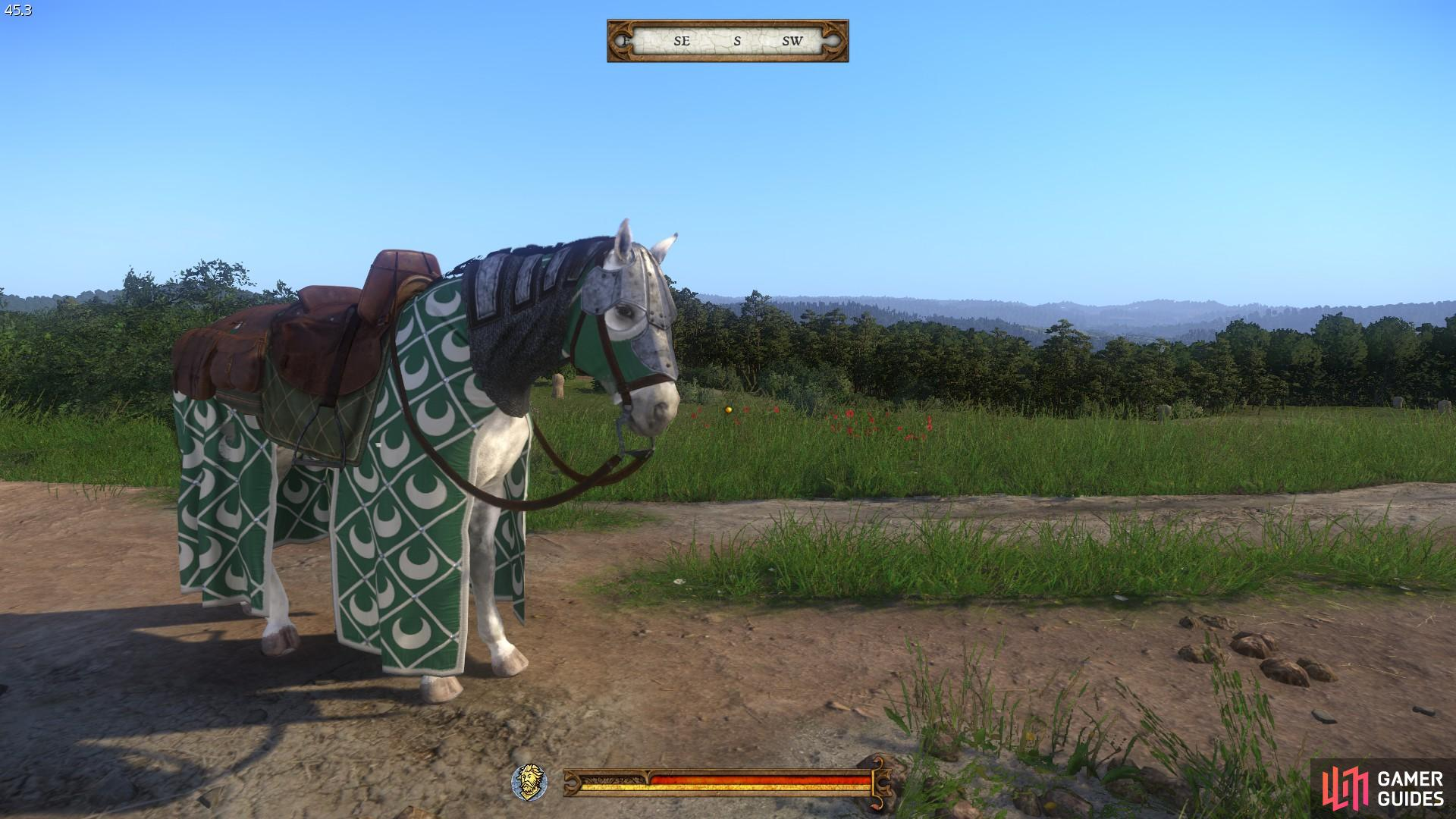Horse head armour found east of Ledetchko.