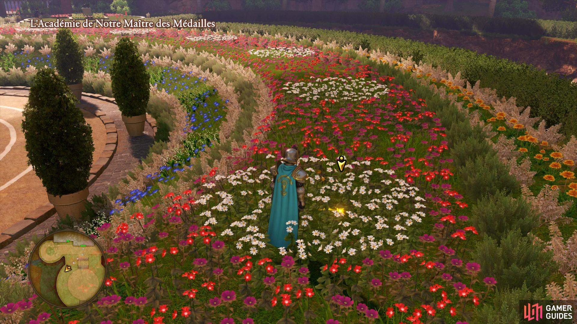 search the field of flowers to the southwest of the entrance to find the missing box.