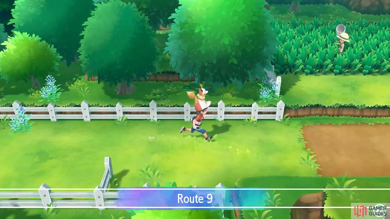 This route is located east from Cerulean City.