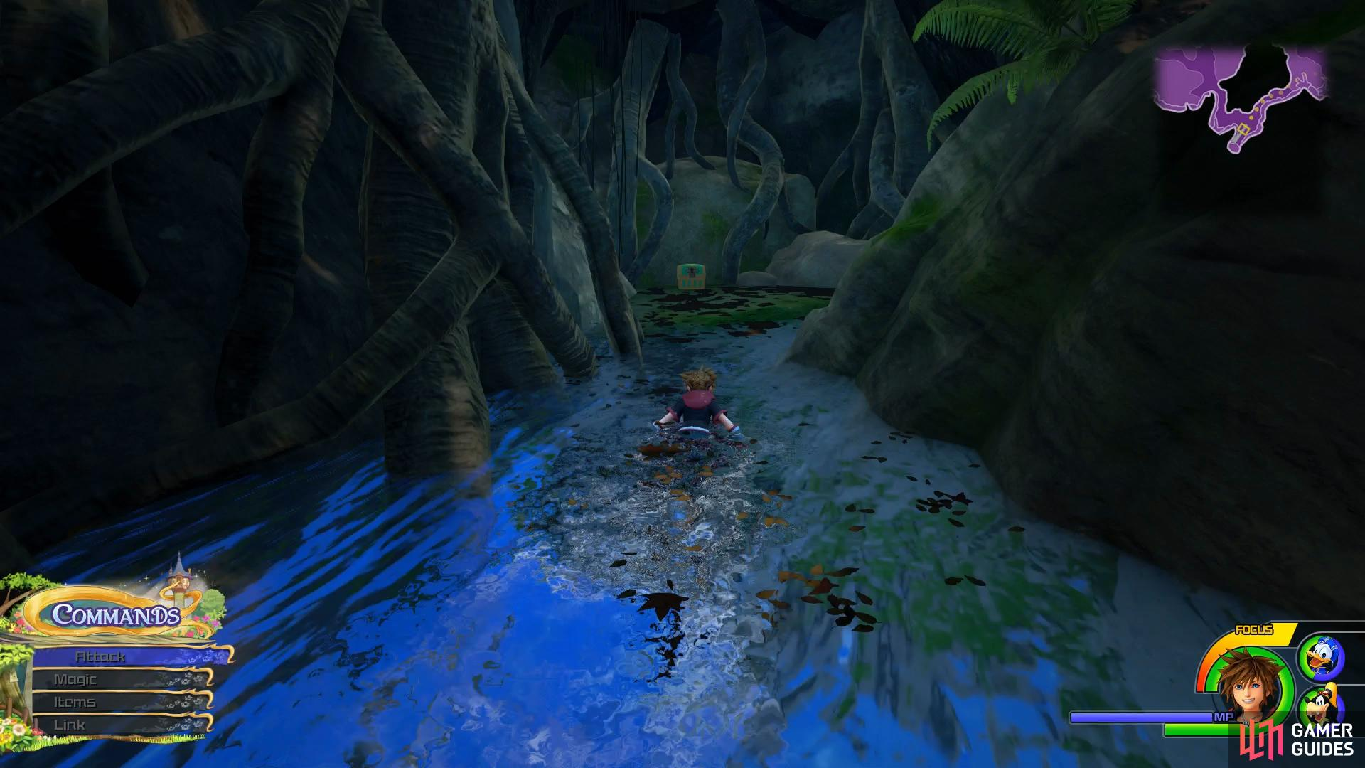 take the western path through the water to discover this chest.