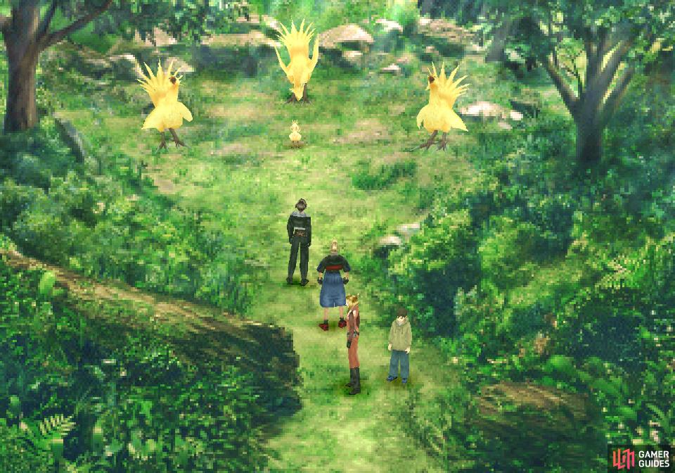 Complete the Chocobo Forest quest