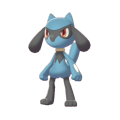 swordshield-pokemon-small-447.png