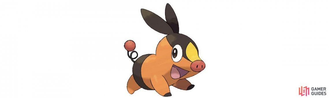 Tepig is a fire type.