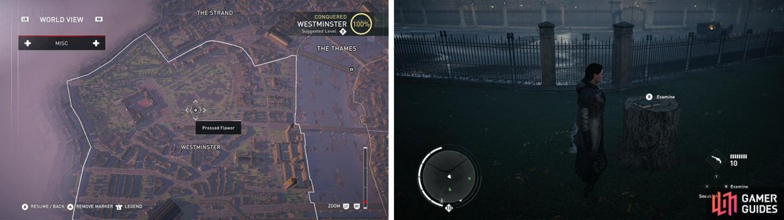 The Pressed Flower icon on the world map (left) and what they look like in-game (right).