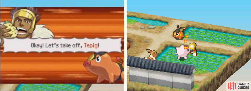 Let's get this fight going: Eevee and Jigglypuff fighting against Tepig.
