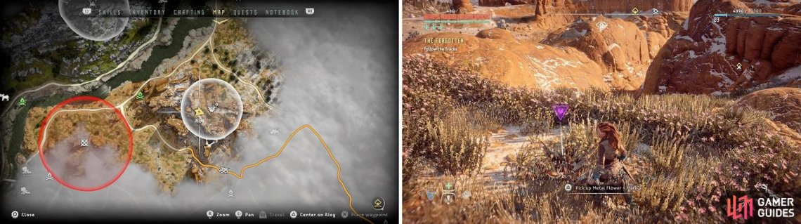 The location of Metal Flower - Mark II (F) on your map (left) and in the game (right).