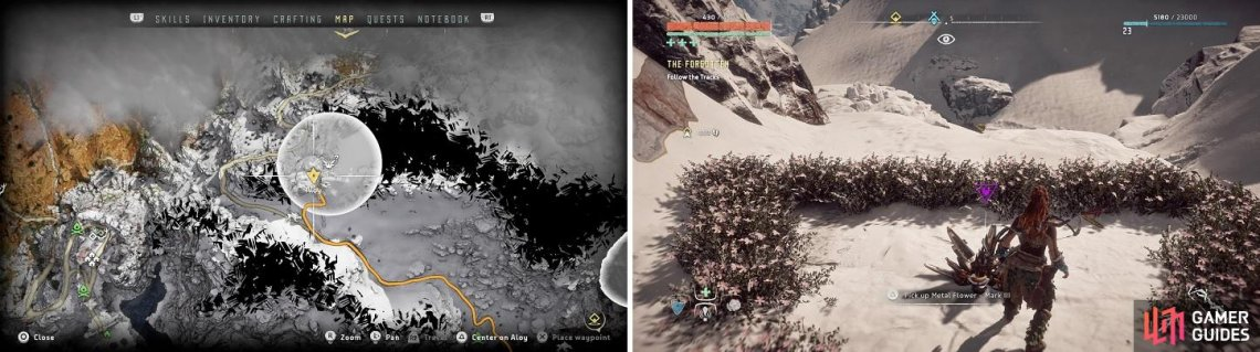 The location of Metal Flower - Mark III (C) on your map (left) and in the game (right).
