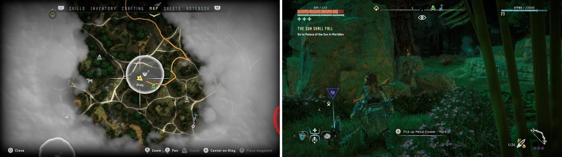 The location of Metal Flower - Mark III (F) on your map (left) and in the game (right).
