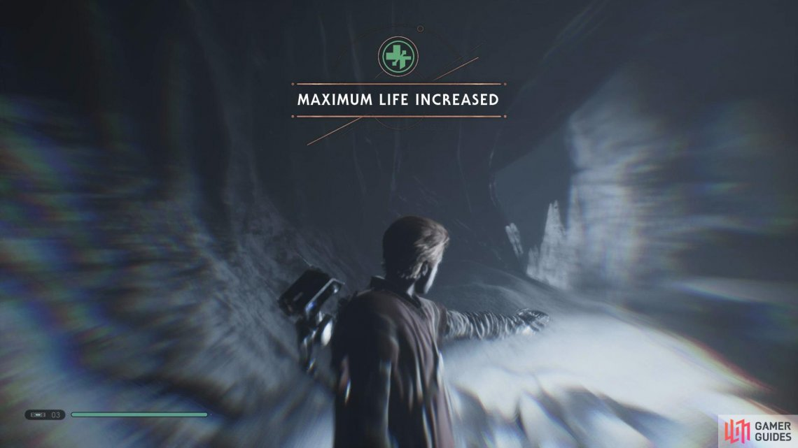 You'll be able to find the final Life Essence at the end of a Wall Run section..