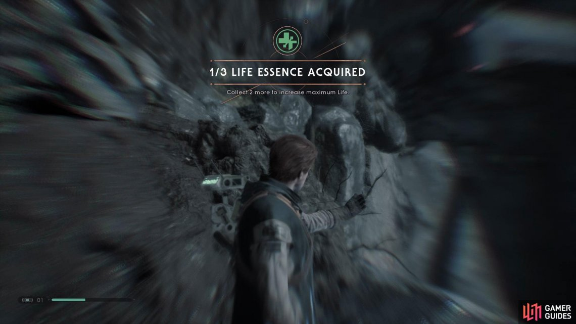 You'll find the sixth Life Essence is just before the zip line in the Venetor Wreckage.