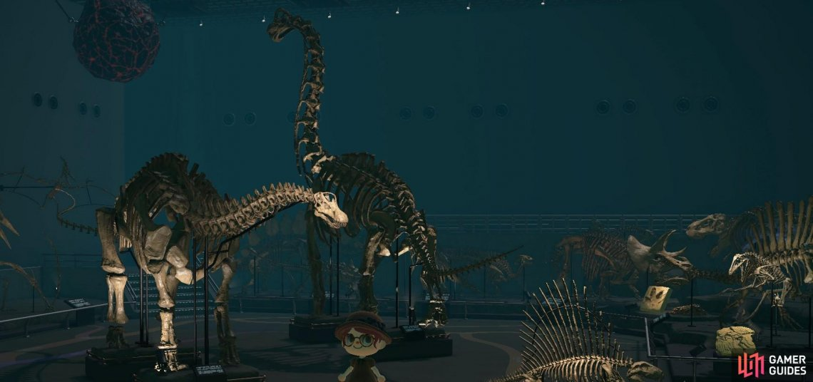 The Diplodocus is made up of six parts due to its long neck and tail.