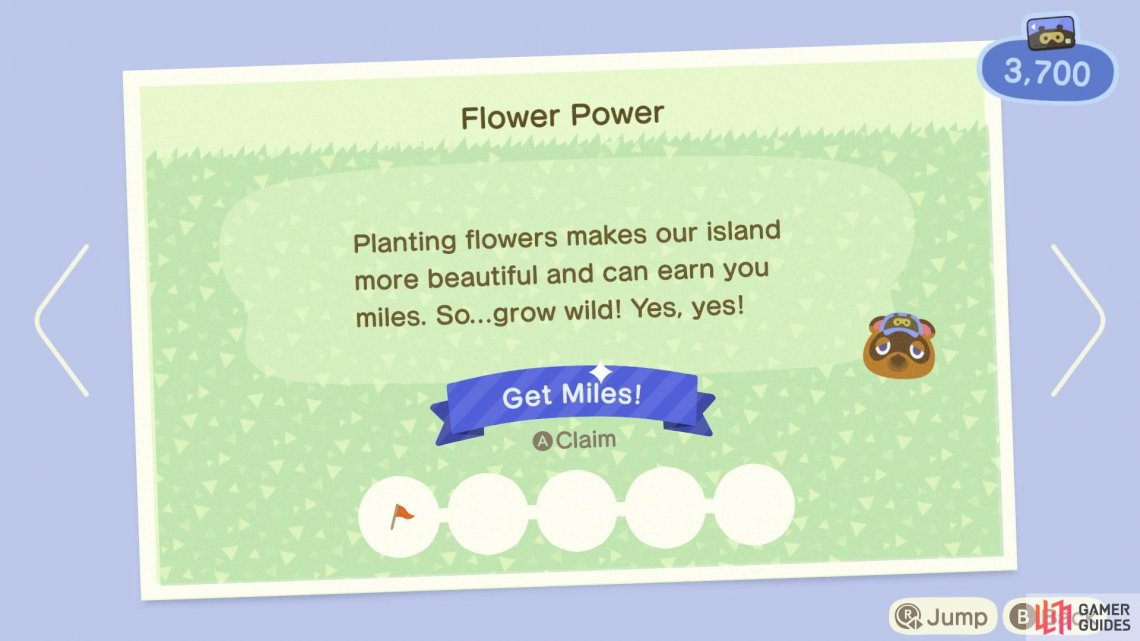 Plant flowers by buying seeds from Timmy
