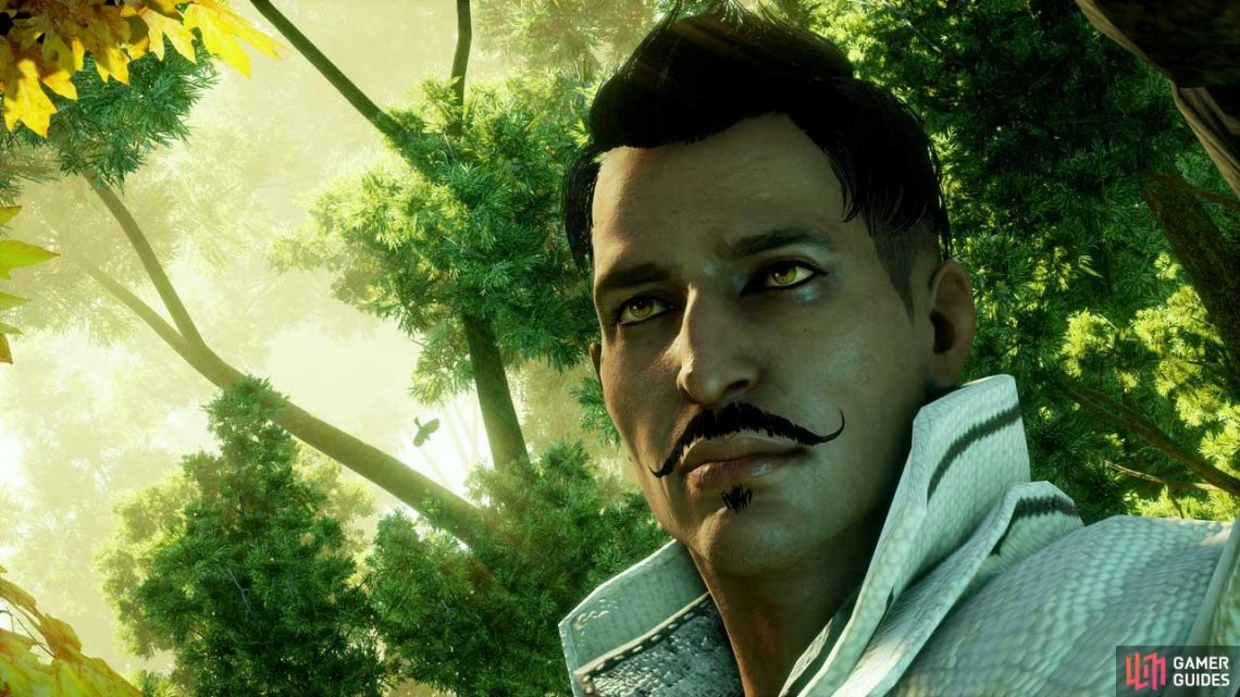 Hailing from Tevinter, Dorian is a pariah back home. But he wears that mantle proudly for the Inquisition.