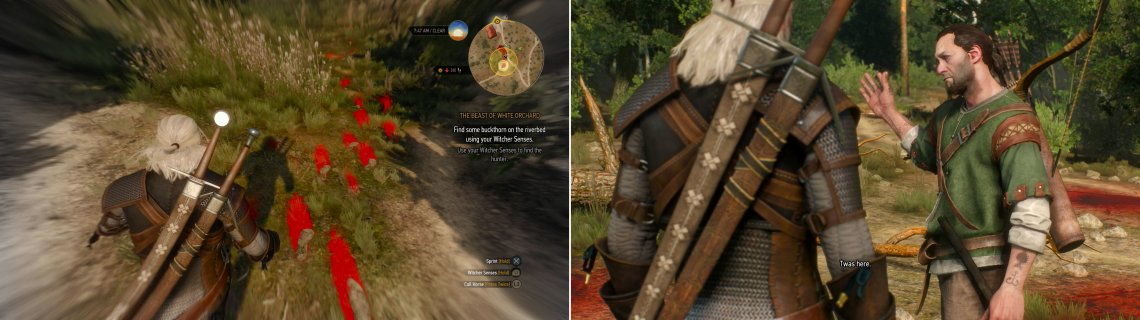 Track Mislave down (left) and get him to lead you to where the Griffin attack the Nilfgaardian patrol (right).