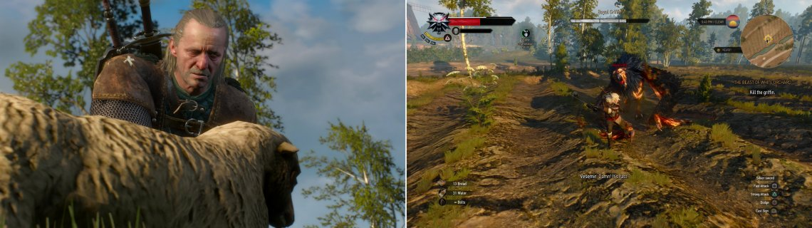 Vesemir uses a clever bit of bait to lure the Griffin (left). When it arrives, attack the Griffin (right).