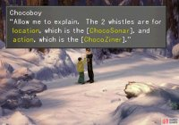 Talk to Chocoboy to learn how to catch chocobos.