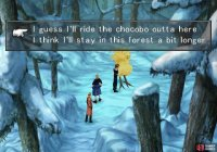 Return to the Bika Snowfield Chocobo Forest and mount a chocobo