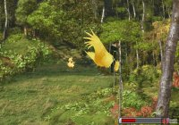 then use the ChocoZiner to get the chocobo to dig for you
