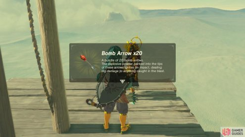 These are the only type of arrow that will hurt Vah Naboris