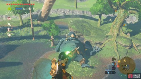 The Middle Kin Hinox is a Blue Hinox