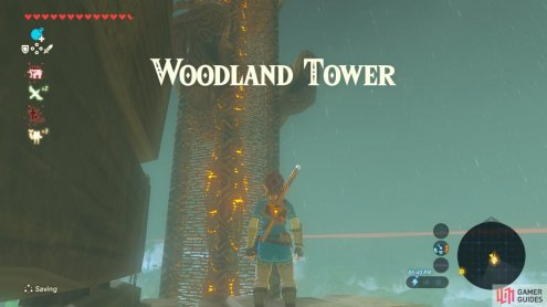 The Woodland Tower is west of the Eldin region.