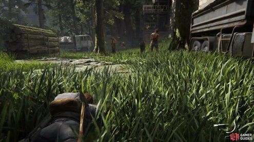Once you've made it to the Dome via the fence, crawl through the grass to stealth takedown the enemies