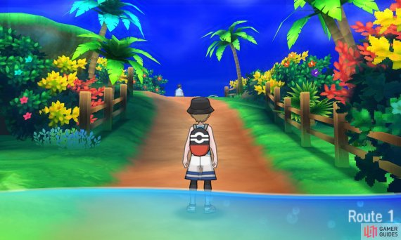 Alola can feel like a very different place depending on the time of day.