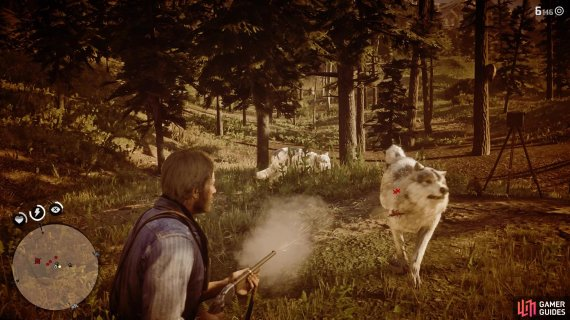 Using Dead Eye can help take out a few of the wolves