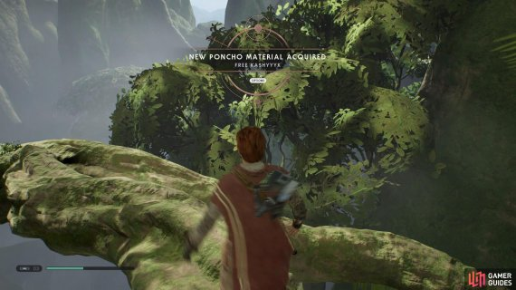 Get the Free Kashyyyk Poncho from the Chest on the branch