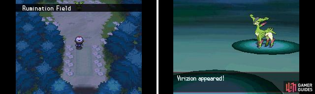 Virizion only appears after you've captured Cobalion. It can be found inside Pinwheel Forest.