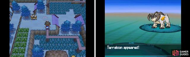 Battle for Terrakion!