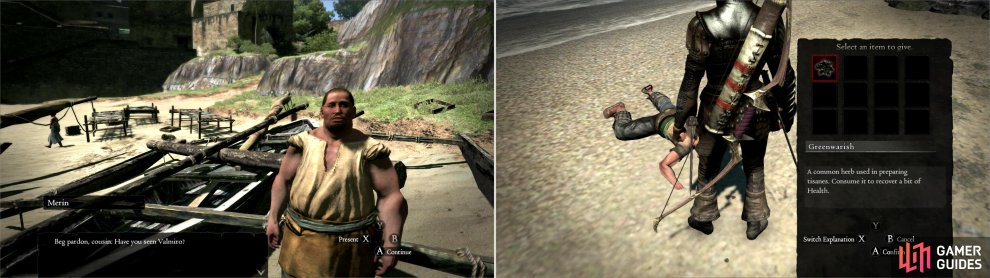 Find Merin around town and he'll ask you to go find the wayward Valmiro (left). The reckless would-be explorer can be found first on the beach of Seabreeze Trail (right) and later near the Encampment. Provide him Greenwarish to revive him.