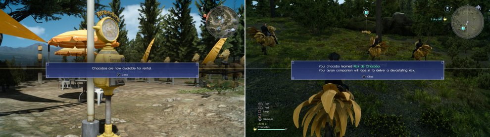 Once Deadeye is no longer a threat, you'll be able to rent and ride Chocobo (left). As you ride them, they'll level up, gaining stat boosts and special abilities (right).
