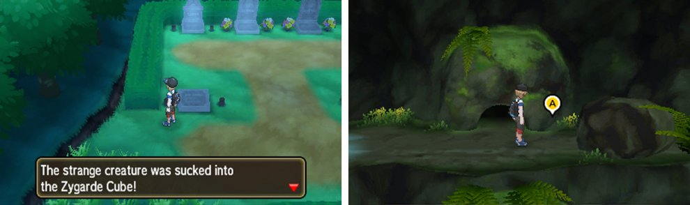 Left: Zygarde Cell (9), Right: Zygarde Cell (10)