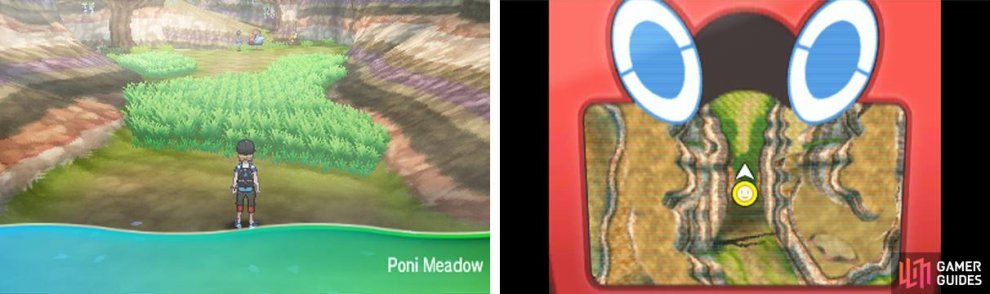 Poni Meadow is where you can get a Sensu Style Oricorio.