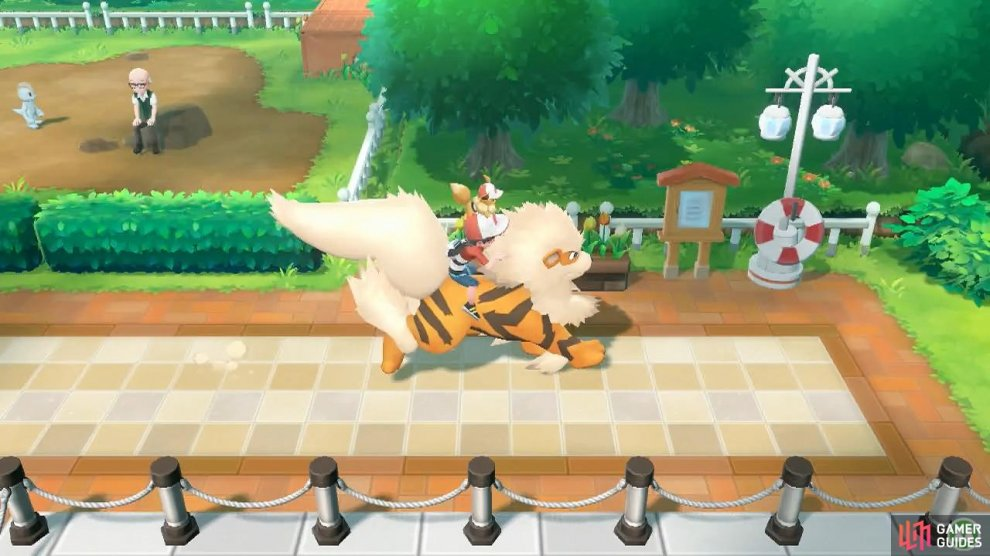 Life doesn't get much better than riding on top of an Arcanine.