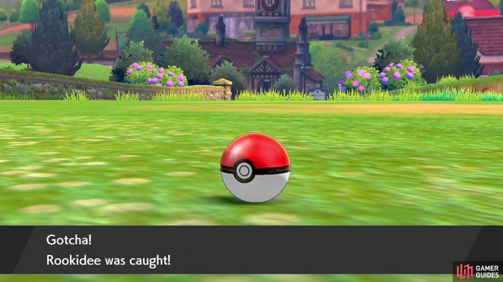 After catching a Pokémon, you can give them a cool or silly nickname.