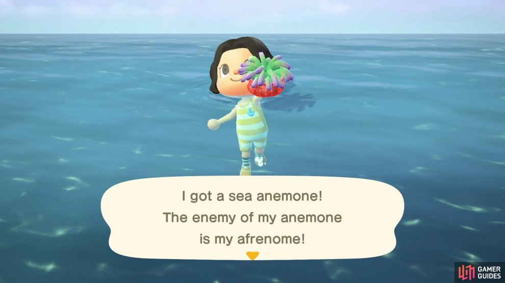 The Sea Anemone is an easy catch!