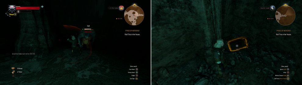 Defeat the Nekkers and the Rock Troll (left) then claim the treasures hidden in their cave (right).